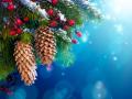 Кузнецов рассказал, как новокузнечане будут отмечать Новый год