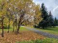 В Новокузнецк придут дожди и снег