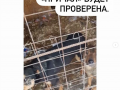 Мэр Новокузнецка поручил проверить приют