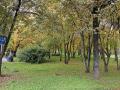 Почему парк Гагарина не может сравниться даже с невзрачным сквером в спальном районе Петербурга