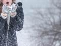 Глава Новокузнецка рассказал о мероприятиях города на Рождество