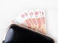 Сколько кузбасских семей получили деньги за первенца