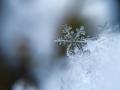Кемеровчанам пообещали снег с дождями на этой неделе