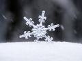 В Кемерове выпал первый снег