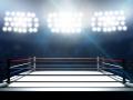 Кузбасс поборется за возможность проведения чемпионатов России и Европы по боксу