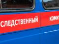 При пожаре в Кузбассе погибли пенсионер и 11-летняя девочка