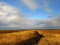 Сельхозземли Кузбасса вспашут на 2.4 млрд рублей