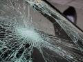 В Новокузнецке автобус и легковушка на скорости сбили стадо баранов