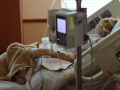Два пациента с COVID-19 умерли в Кемерове и Новокузнецке