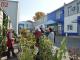 Для садоводов откроется ярмарка «Сибдача-осень»